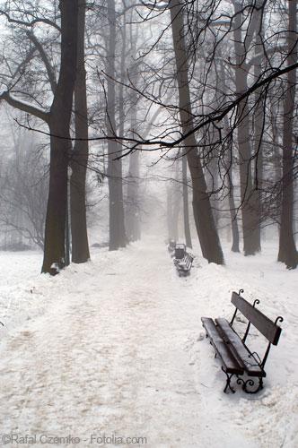 Résister à l'hiver